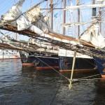 Traditionssegler Hanse Sail