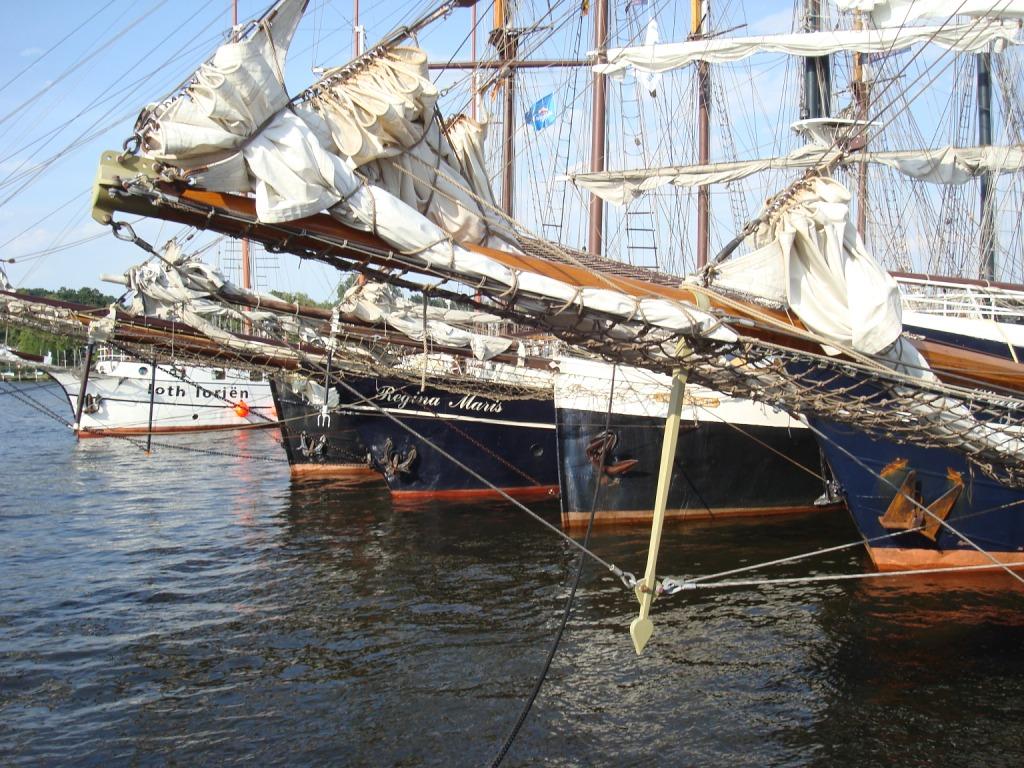 Hanse Sail Mitsegeln online buchen